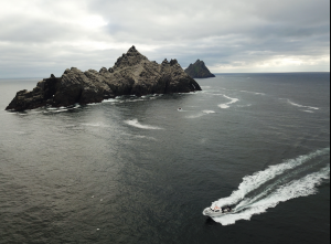 Small skelligs